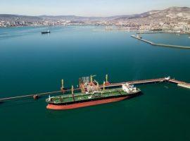 «Транснефть» остановила переговоры с «Суммой» о порте Новороссийска