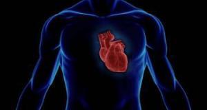 Популярный антибиотик провоцирует остановку сердца - исследование
