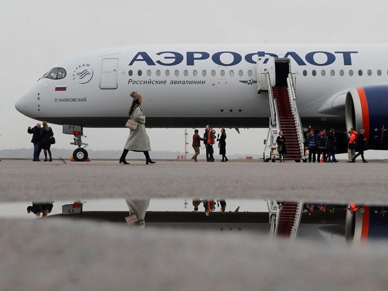 «Аэрофлот» соберет экспертную группу для изменения правил перевозки животных