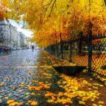 «Бабье лето» начнется в столице России во вторник