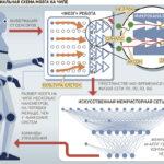 Российские ученые раскритиковали предложенный Маском способ борьбы с параличом