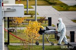 Коронавирус в Пермском крае: последние новости 15 октября. Побит рекорд по числу зараженных COVID