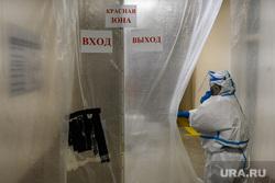 Спасет ли Россию тотальный карантин по коронавирусу. Объяснение вирусолога
