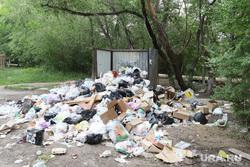 В России придумали, как решить проблему с вывозом мусора