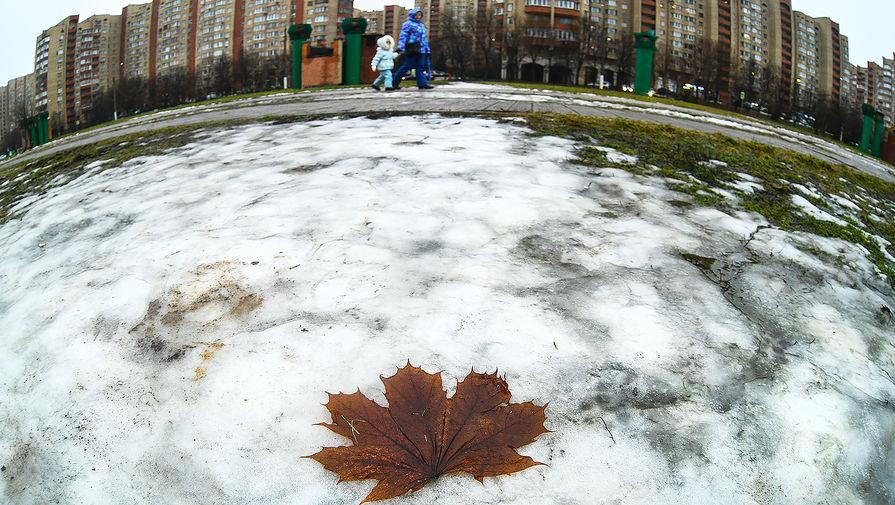 В Москве в субботу ожидается до +1°С