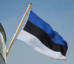 Эстония ответила на предложение войти в состав России