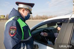 Минцифры РФ предложило заменить водительские права QR-кодом