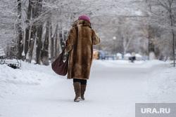 Синоптики раскрыли причину январских морозов в России