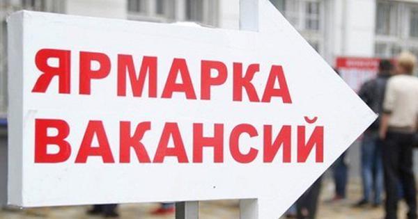 Уровень безработицы вСевастополе признан одним изсамых низких вРоссии