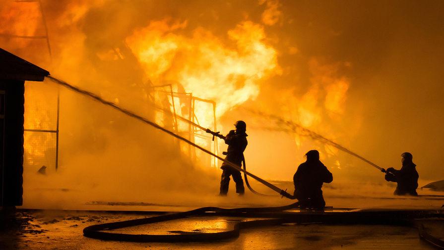 Один взрослый и двое детей погибли при пожаре в Омской области