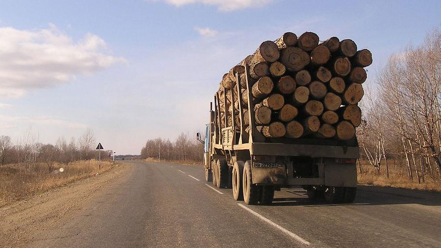 Прокуратура завела дело после контрабанды леса под Иркутском на сумму более 1 млрд рублей