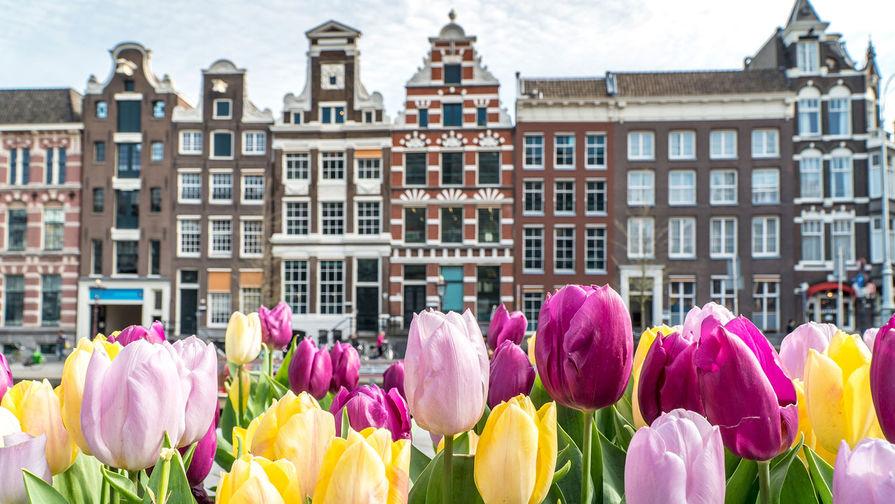 В Амстердаме на протестах против коронавирусных ограничений задержаны 150 человек