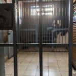 Глава ФСИН сделал заявление о тюремных колл-центрах в России