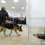 Источник: сообщения о «минировании» вокзалов Москвы пришли из США