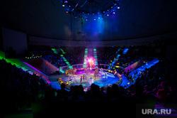 Львица Уральского цирка напала на дрессировщика на гастролях