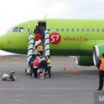 Российские авиакомпании отменили рейсы в Турцию до осени