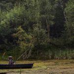 ВТомилинском лесопарке плавает смерть скосой