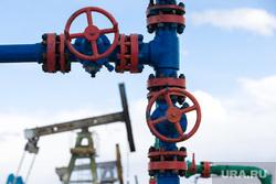 Экономист рассказал о будущих доходах РФ от экспорта газа