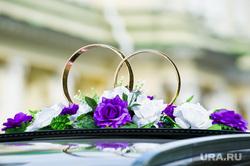 ФСБ поймала организаторов фиктивных браков в Кургане